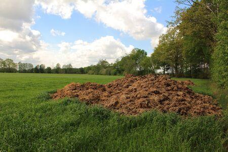 Muck heap in the meadow