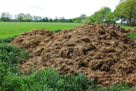 Dung heap in the countryside