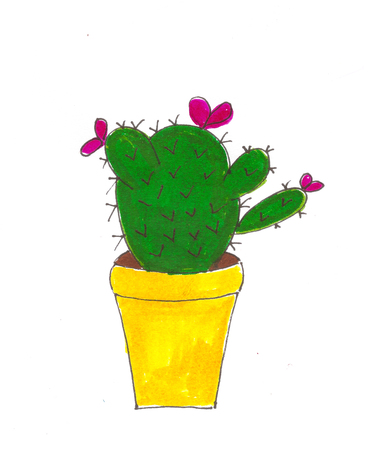 Handmade cactus drawing design Stock Photo