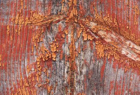 Wood texture with natural pattern. Old paint.