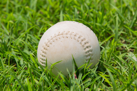 baseball on the fresh green grass  photo