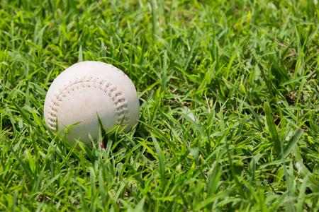 baseball on the fresh green grass .the old bal. photo