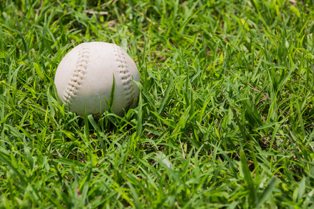baseball on the fresh green grass  photo