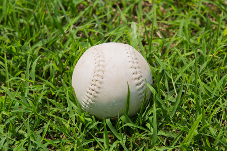 baseball on the fresh green grass . photo
