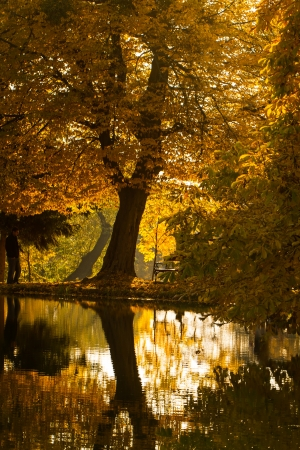Beautyful colors of autumn landscape by the lake