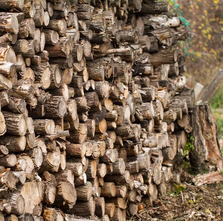 Winter firewood stacked in a pile photo