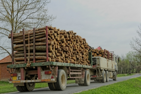 timber truck carrying Stock Photo