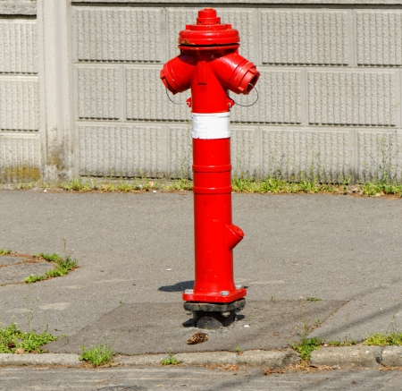 red fire hydrant on the sidewalk Stock Photo - 20096820