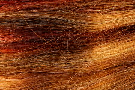 gingery: multicolored highlight hair texture abstract background