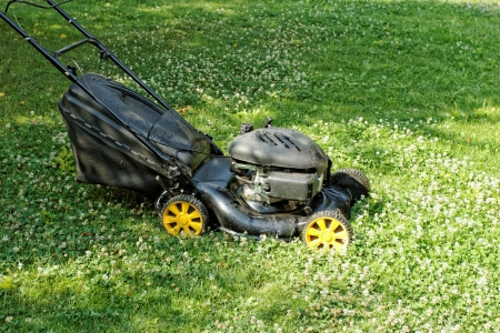 Black lawnmower in the garden lawn the grass with fuel engine Stock Photo - 20841091
