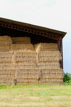 straw bales under the roof in the meadow photo