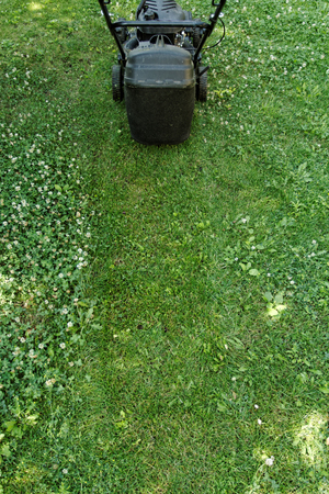Black lawnmower in the garden lawn the grass with fuel engine photo