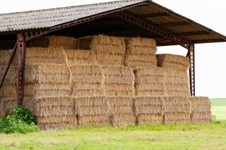 straw bales under the roof in the meadow