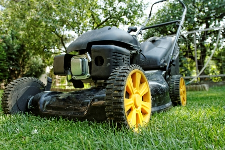 Black lawnmower in the garden lawn the grass with fuel engine