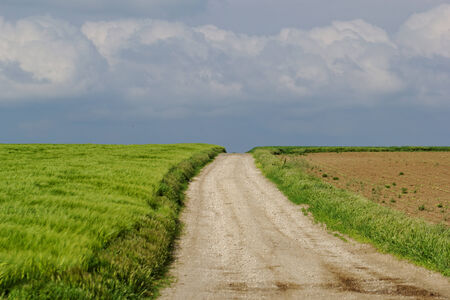 Photo of a dirt road, green grass and blue sky