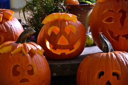 Overview of our freshly carved pumpkins for Halloween.