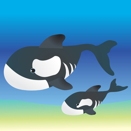 mather: Mather and baby killer whale underwater  Illustration