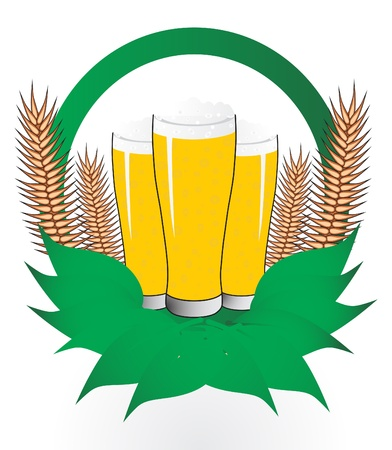 Beer, vector illustration  Vector