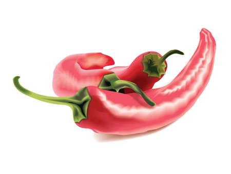 Hot Chilly Peppers  Stock Vector - 13914888