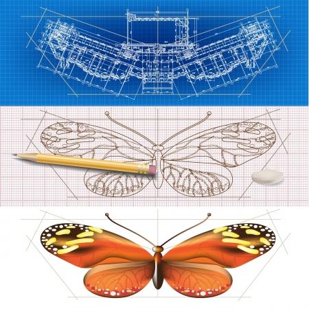dibujo tecnico: Banners creativos arquitectónicos con una mariposa