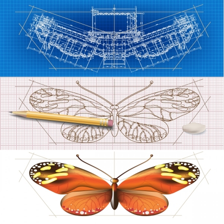Creative architectural banners with a butterfly Illustration