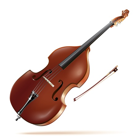 contrabass: Musical background series - Classical contrabass, isolated in white background