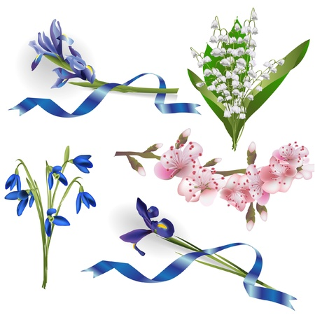Set of spring flowers for design purposes Vector