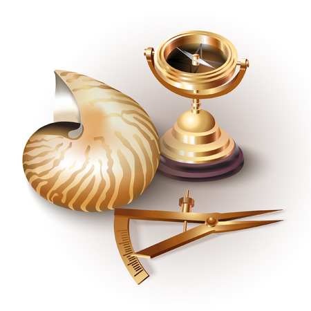 navigational: Set of navigation tools and shells, isolated on white background Illustration