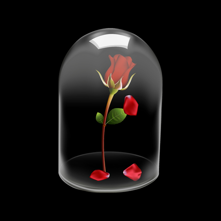 fallen: Glass dome cover Rose flower