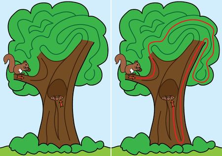 Squirrel labyrinthe pour les enfants avec une solution Illustration