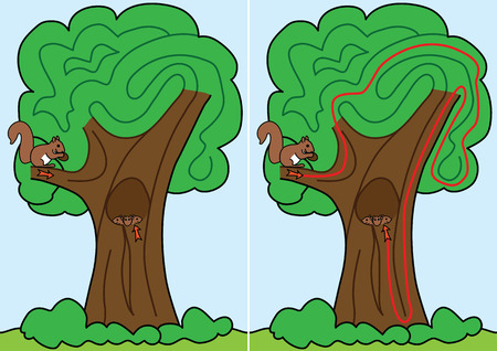 Squirrel maze for kids with a solution Vector