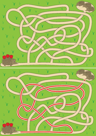 Easy hedgehog maze for kids with solution
