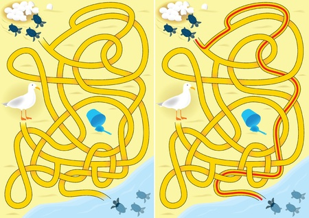 gull: Turtle maze for kids with a solution Illustration