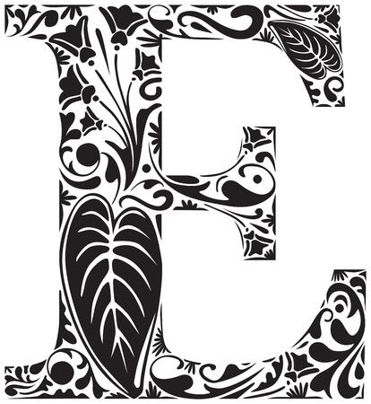Floral E majuscule initiale Illustration