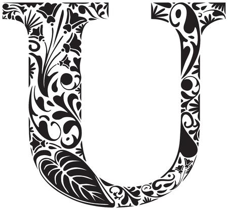 capital letter: Floral initial capital letter U Illustration