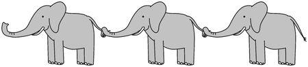 Three grey elephants ina a row holding tails
