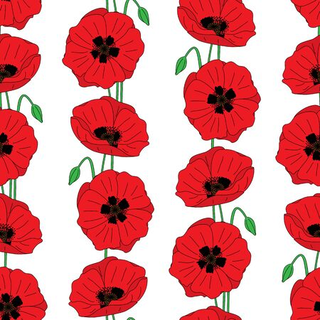 poppies: Seamles pattern made of red illustrated poppies Illustration