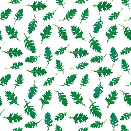 Seamless pattern made of illustrated rucola leaves on white