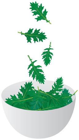 Illustration of fresh arugula leaves falling into the salad bowl Ilustracja