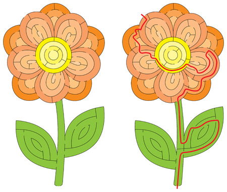 Flower maze for kids with a solution  イラスト・ベクター素材