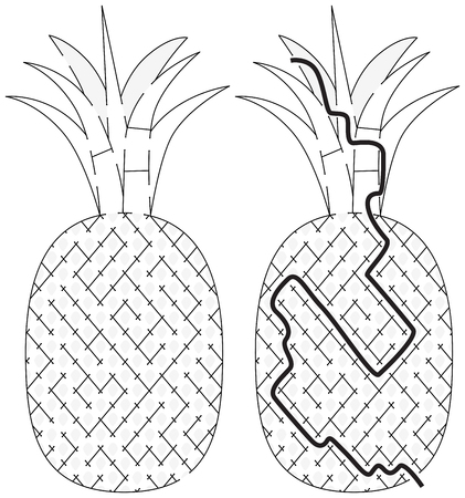 younger: Easy pineapple maze for younger kids with a solution in black and white Illustration