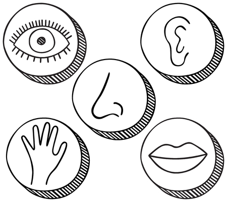 Hand drawn icons containing symbols for five senses - sight, hearing, smell, touch and taste. Illustration