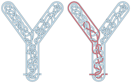 Maze in the shape of capital letter Y - worksheet for learning alphabet