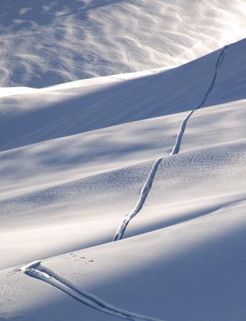 offpiste: Off-piste ski track in sunset light Stock Photo
