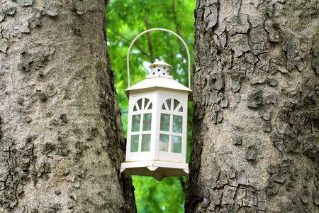 photons: garden lighting
