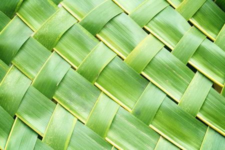 Zigzag in elkaar grijpen van kokosnoot verlaat weave