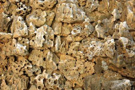 porous: wall porous rock for background
