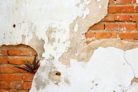 weed block: old dirty interior with brick wall, vintage background