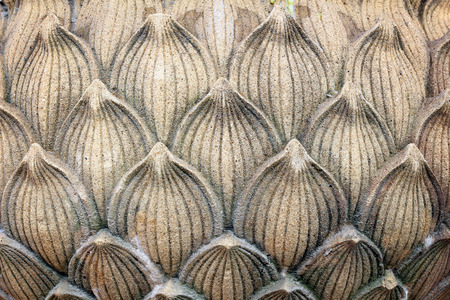 Stone lotus petals photo