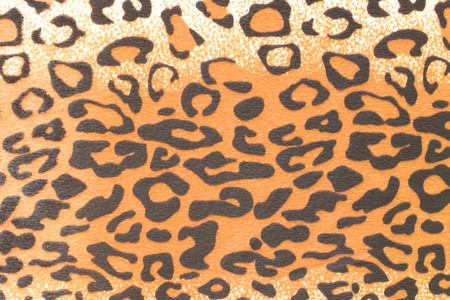 leopard background: Leopard background